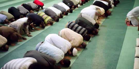 1486032_3_6c2a_des-musulmans-en-priere-dans-une-mosquee-a