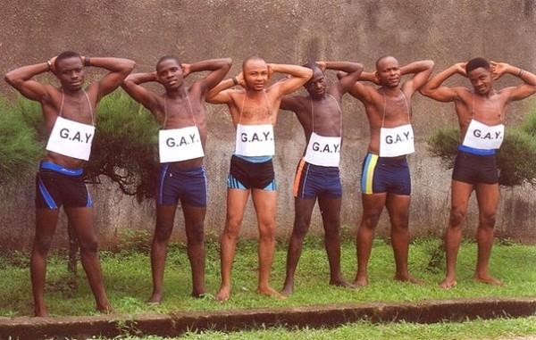 gay-homos