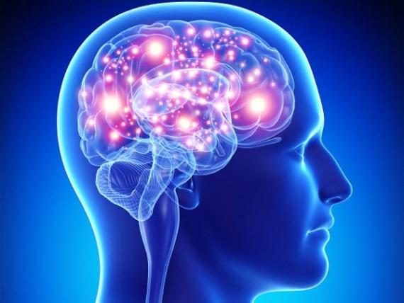 bioethique-manipulation-memoire-cerveau-matthew-liao-e1445429485336