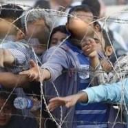 Pays-Bas : l'accueil séparé des réfugiés homosexuels