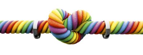 Bruxelles très préoccupée par une loi hongroise homophobe