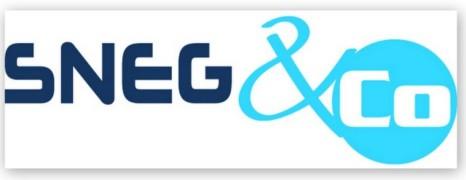Le SNEG vient en aide aux clubs menacés de fermetures