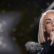 Out d'or 2019 : Bilal Hassani élu personnalité LGBTI de l'année