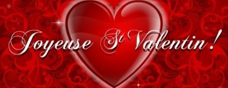 Bonne St Valentin aux amoureux !