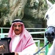 La fausse histoire de l'euthanasie du cheval saoudien gay